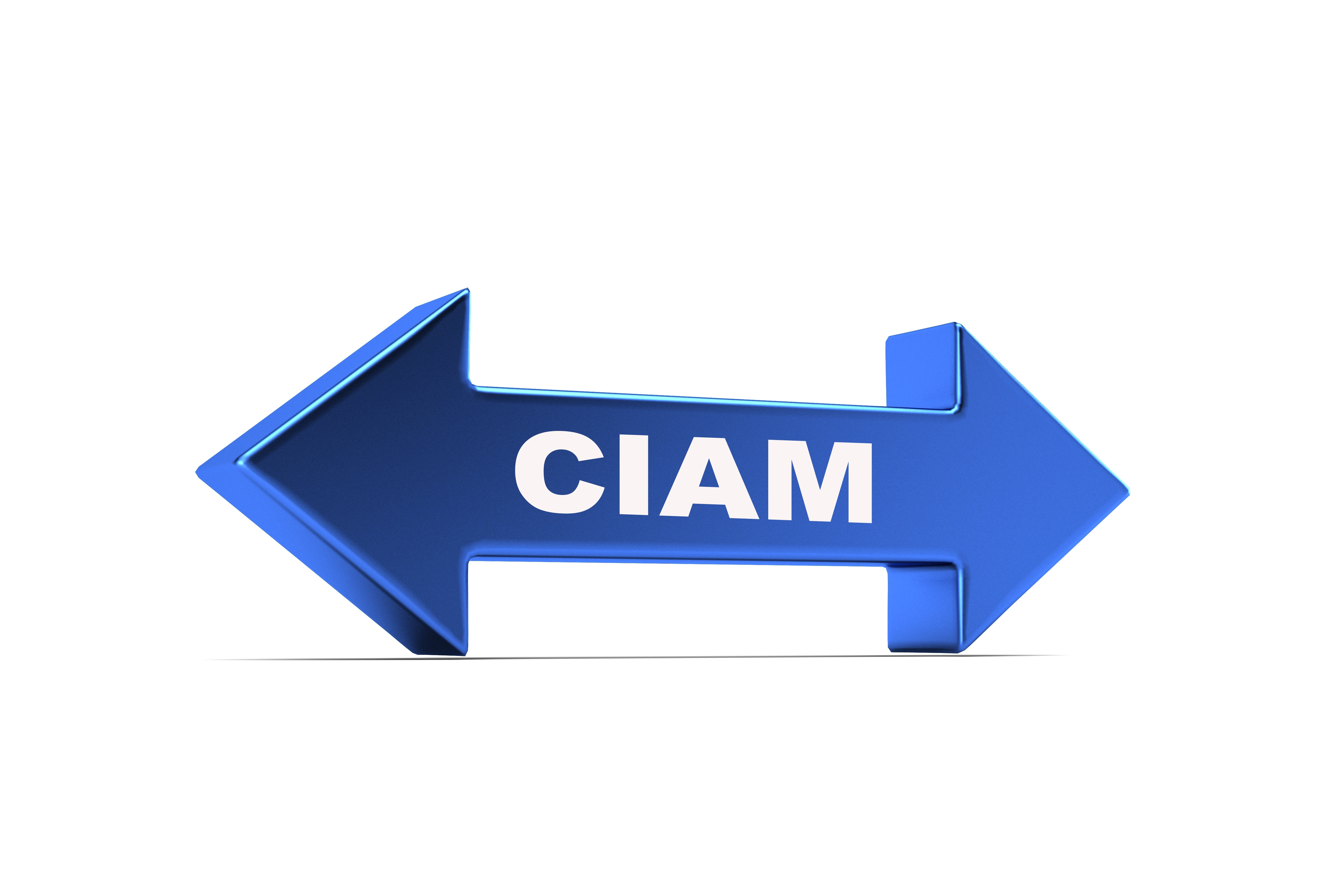 ciam double arrow connecting business outcomes and customer e